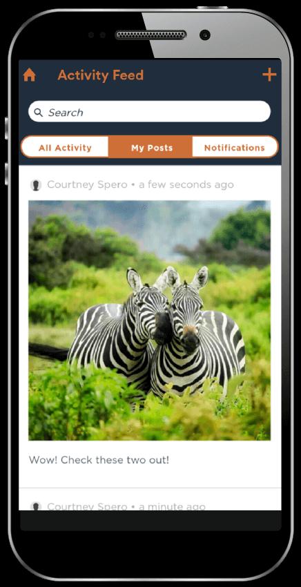 activity feed eventapp