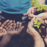 Insights-CSR in Events: More Than Just a Responsibility